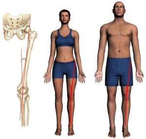 Передняя поверхность коленного сустава.