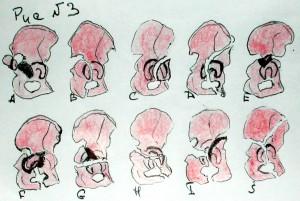 Передняя косая проекция крыла подвздошной кости.